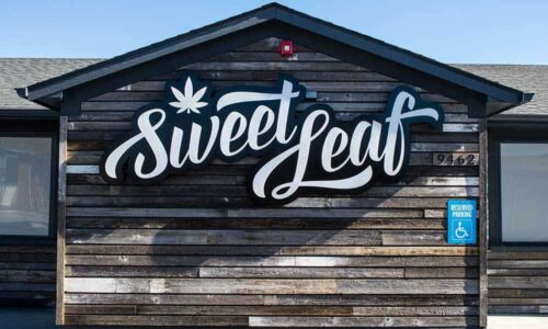 Colorados-Largest-Pot-Businesses-Raided-Licenses-Suspended-Sweet-Leaf