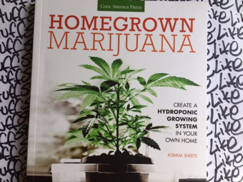 Homegrown-marijuana