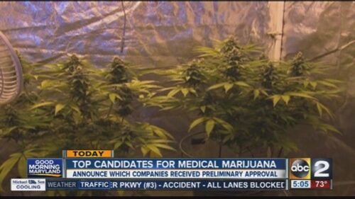 Maryland_Medical_Cannabis_Commission_wil_0_44326833_ver1.0_640_480