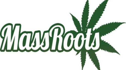 Top-Cannabis-Stock-To-Watch-MassRoots-Inc.-Makes-Big-Moves-With-Blockchain-Shares-Up-25-678×381