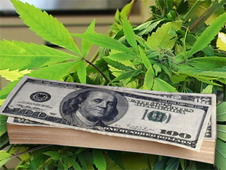 Majority of Cannabis Businesses are Profitable