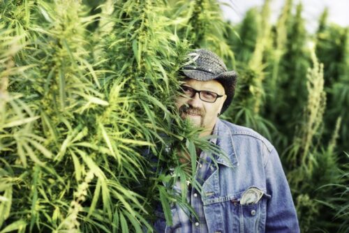 marijuana-cultivator-posing-with-plants-cannabis-getty_large