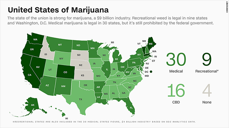 a debate over the legal use of cannabis in the united states On 1 january 2014, cannabis began to be sold legally in colorado for recreational use, thus paving the way for the first legal market for cannabis in the united states in may of 2014, minnesota legalised medicinal cannabis, although the state's legislation only applies to cannabis extracts.